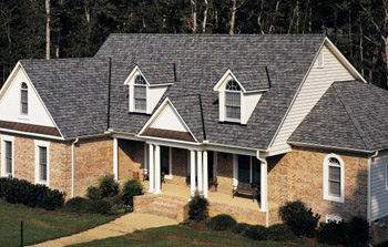 Solomons Roofing Windows